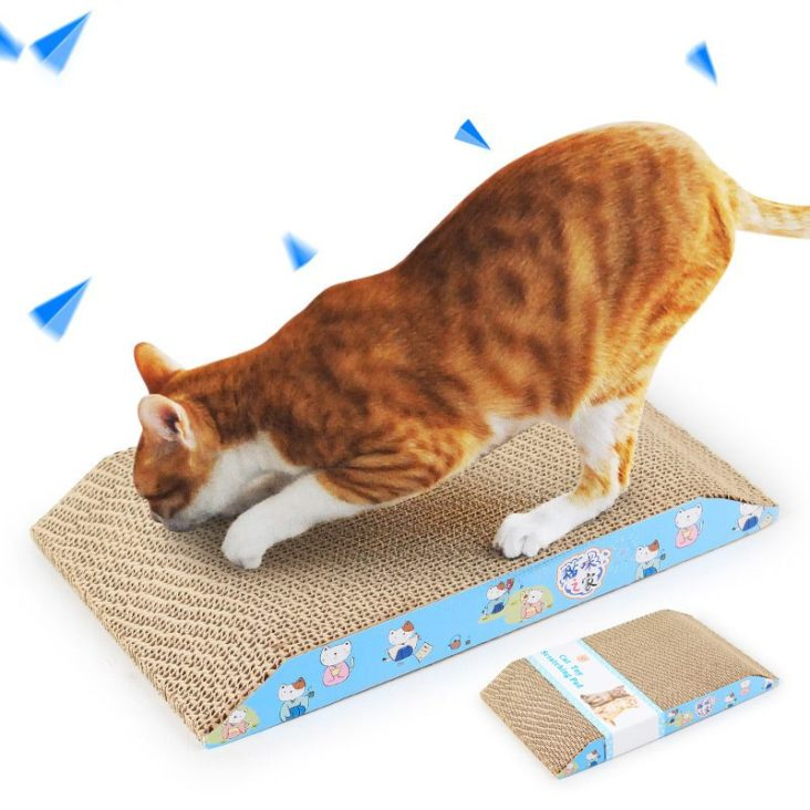 làm đồ chơi cho mèo
