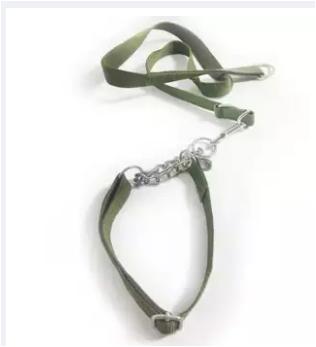 Bộ dây và vòng cổ bộ đội cho chó 5-15kg