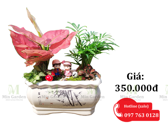 Chau Van Loc Tieu Canh 350k 1